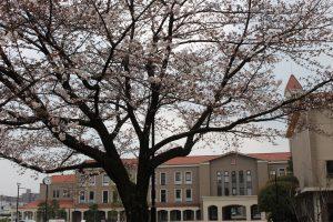 Viện đại học tư thục nữ sinh Fukuoka